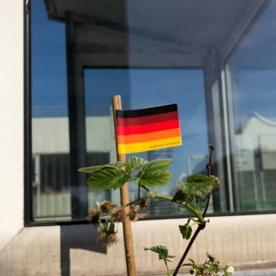 Deutschland Multicolor Flagge-Fähnchen
