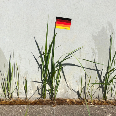 Deutschland Multicolor Flagge-Gras